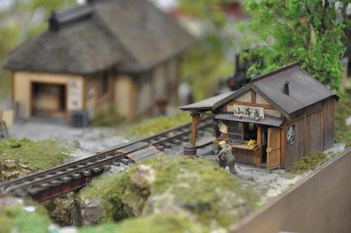 第9回軽便鉄道模型祭11