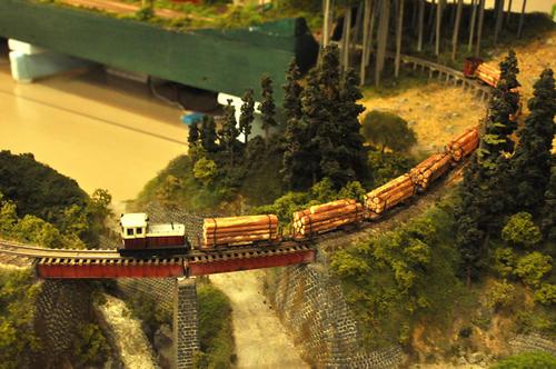 第10回軽便鉄道模型祭・その28