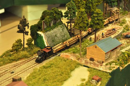 第10回軽便鉄道模型祭・その30