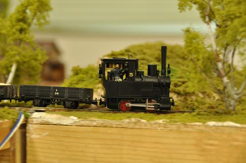 第10回軽便鉄道模型祭・その39