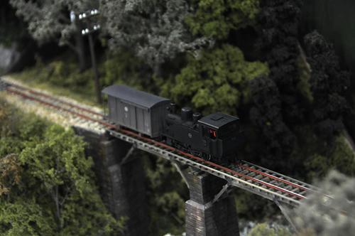 第12回軽便鉄道模型祭・その51