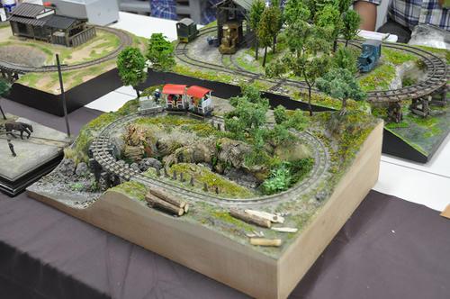 第13回軽便鉄道模型祭・その53