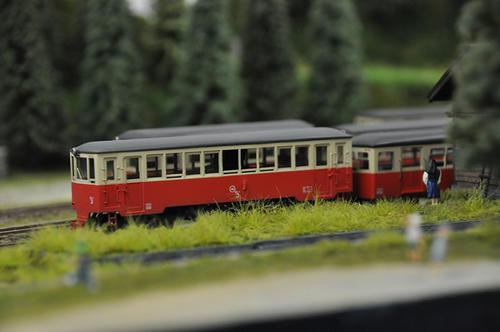第15回軽便鉄道模型祭・その5