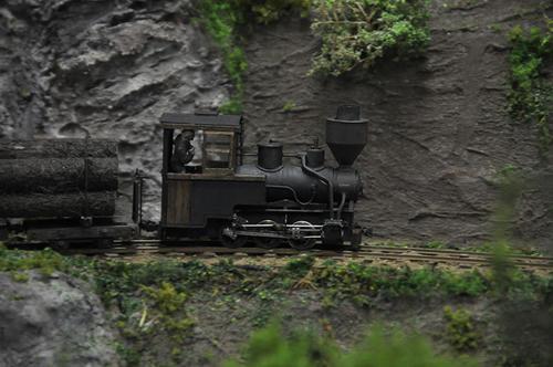 第15回軽便鉄道模型祭・その14