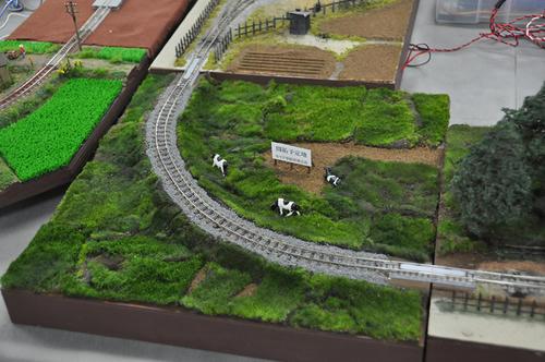 第15回軽便鉄道模型祭・その57