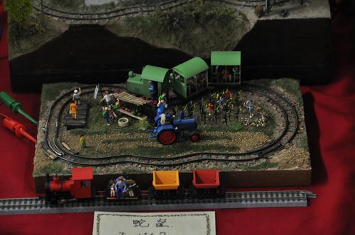 第15回軽便鉄道模型祭・その75