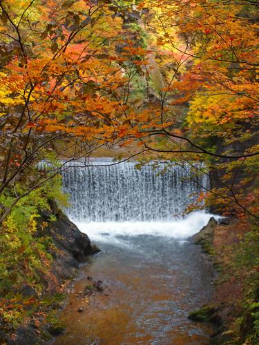 この滝(?)の写真…何枚撮ったことか…