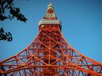 東京タワー2010