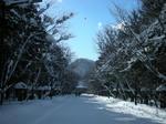 2011北海道神宮前