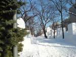 2011雪祭り準備