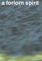 erollisi-7.jpg