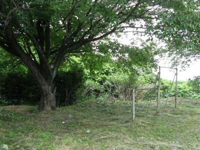 20090608_14.jpg