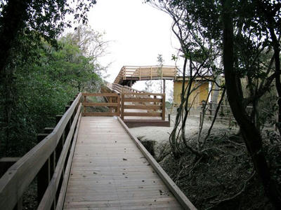 20100212_9.jpg