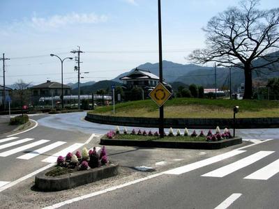 20100404_15.jpg