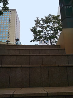 噴水広場から見上げる