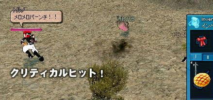 カピバラ<めろめろー!!