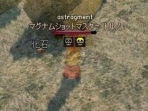 エルフ特権発動ッ!!