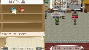akito_6_4.jpg