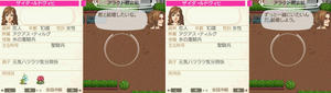 akito_11_7.jpg
