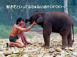 「トム・ヤム・クン!!!!」 象と戯れるトニー=ジャー