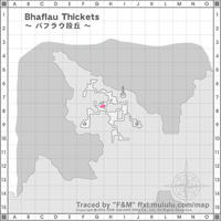 Bhaflau-Thickets_01.jpg