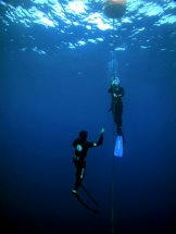freediving_line.jpg