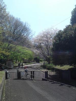 旧野村総研