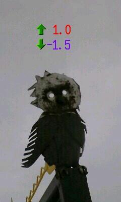 11月24日の気温