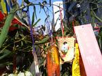 今年の福笹飾り