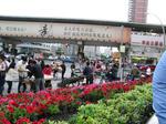 2008/5 三度上海へ