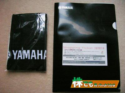 ヤマハのタオルとクリアファイル、優待割引券