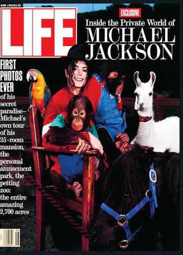LIFE、93年マイケル表紙号