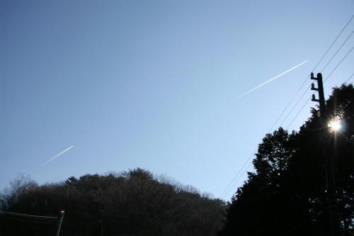 20100119_2.jpg