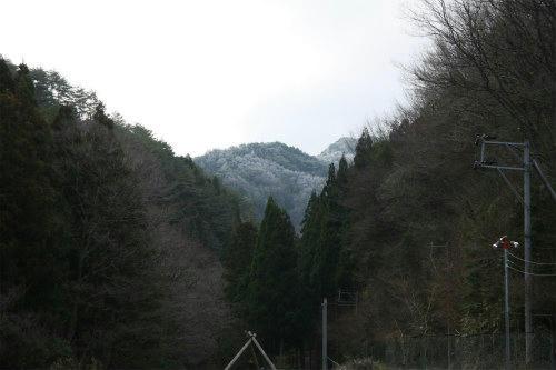 20100311_1.jpg