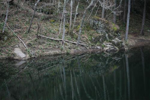 20110322_1.jpg