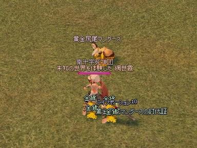mabinogi_2009_08_08_06.jpg