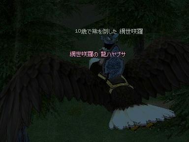 mabinogi_2009_10_27_00.jpg