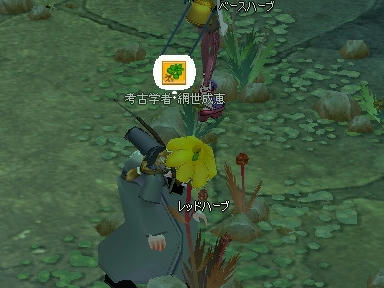 mabinogi_2010_03_06_01.jpg