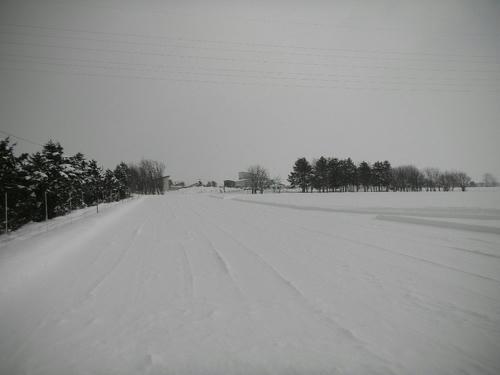 DSCN3001.JPG