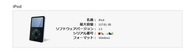 iPod128GB.jpg