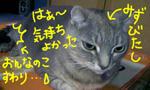090924_1949071.jpg