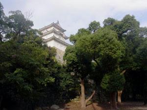20101016_03.jpg