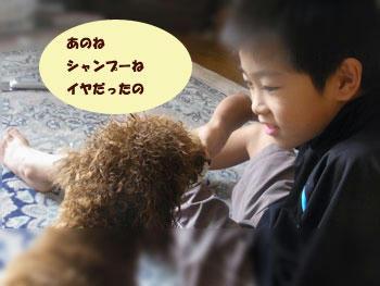 20101023_02.jpg