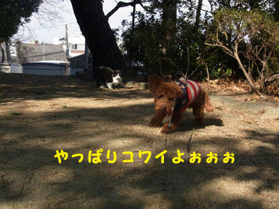20101227_05.jpg