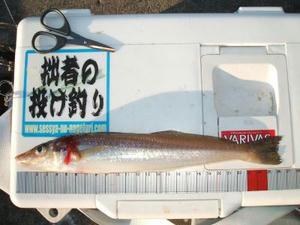miura-kata-12-28_030_400.jpg