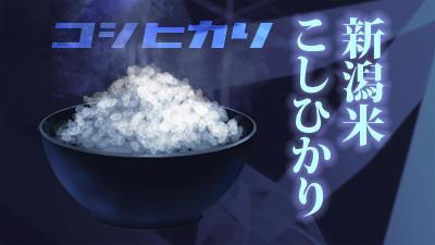 koshihikari.jpg