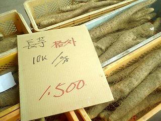 081116_1125_松代長いもまつり(長野市)