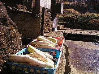 081207_1202_龍興寺清水(木島平村)