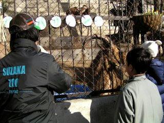 090104_1334_1_須坂市動物園(須坂市)