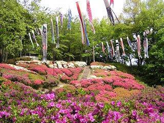 090503_0920_第31回台城つつじ祭り(松川町)